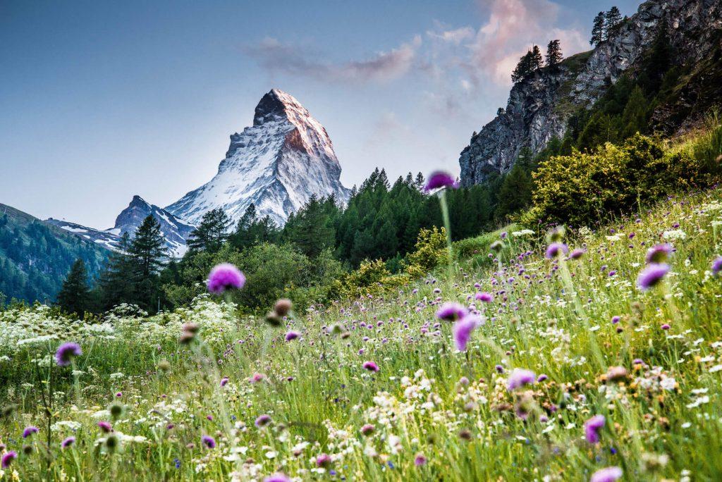 Zermatt Matterhorn Blog Team Berg