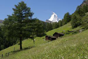 Matterhorn mit Gädis oberhalb von Zermatt