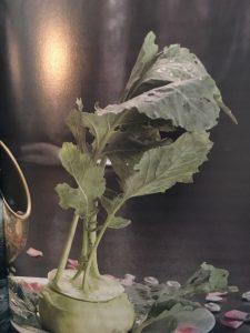 Verstecktes Gemüsesüppchen mit Kräutern