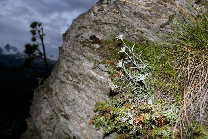 Alpine Landschaft in Zermatt beim Klettern
