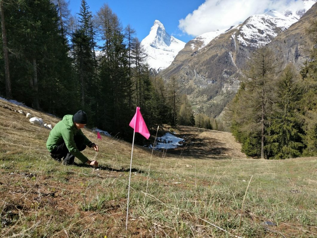Diddie Schneider bei der Gestaltung des Sunnegga Mountainbike-Trails in Zermatt
