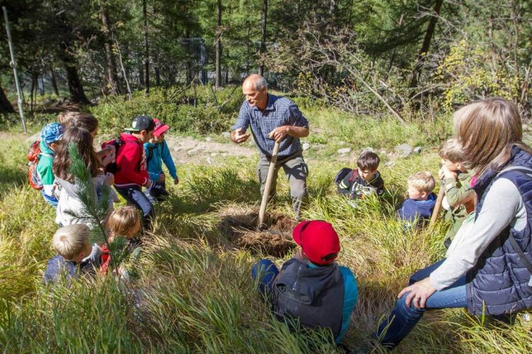 Zermatt Impulse Kinderworkshop im Wald