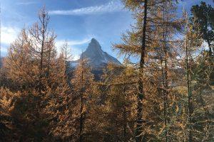 Herbstlandschaft vor dem Matterhorn